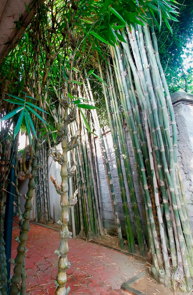 Bali cozy villa near blue ocean