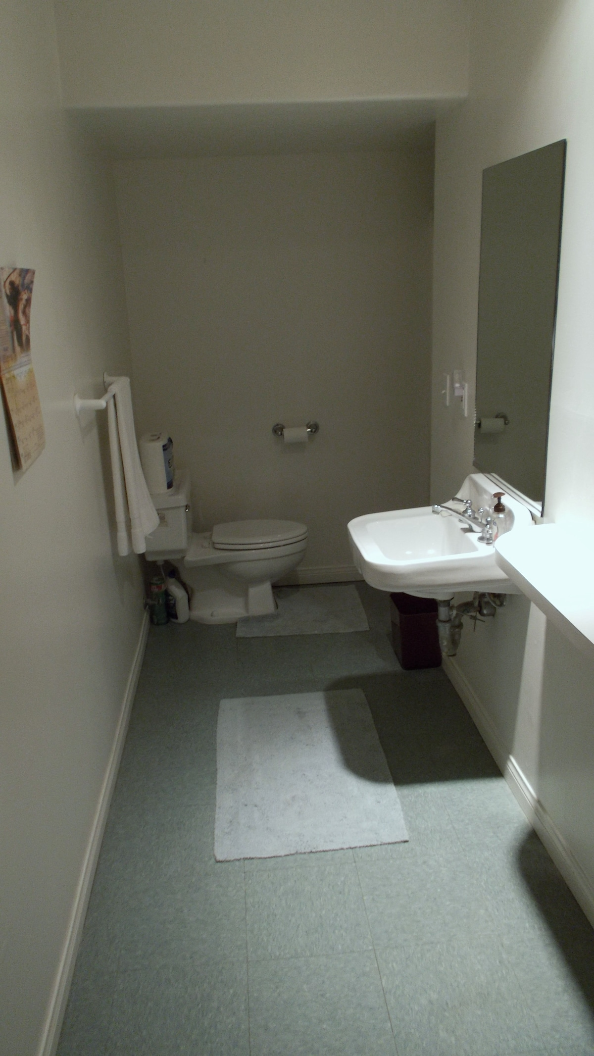 Just outside the bedroom is a private bathroom with a shower.