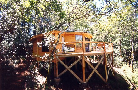 Outside view of Bella Luna Treehouse