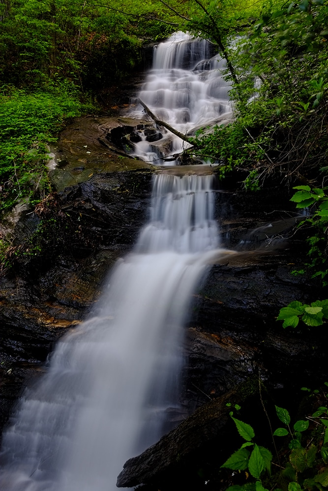 A Waterfall, Wildlife and  Mountain