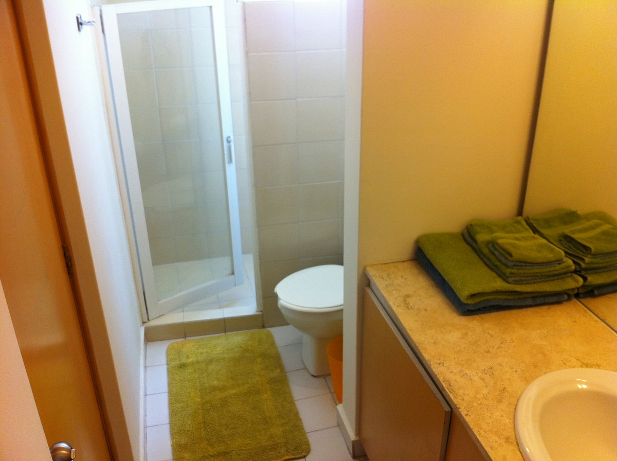 Bathroom, with shower and huge mirror.  El baño: con regadera y enorme espejo;