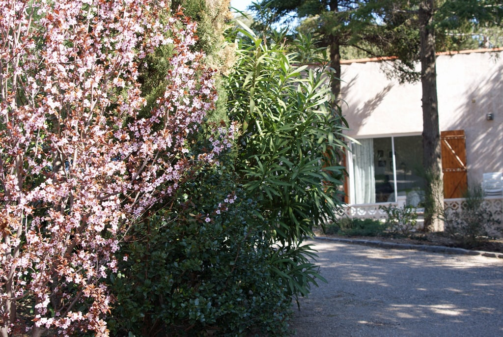 Sommarhus i charmigt vindistrikt