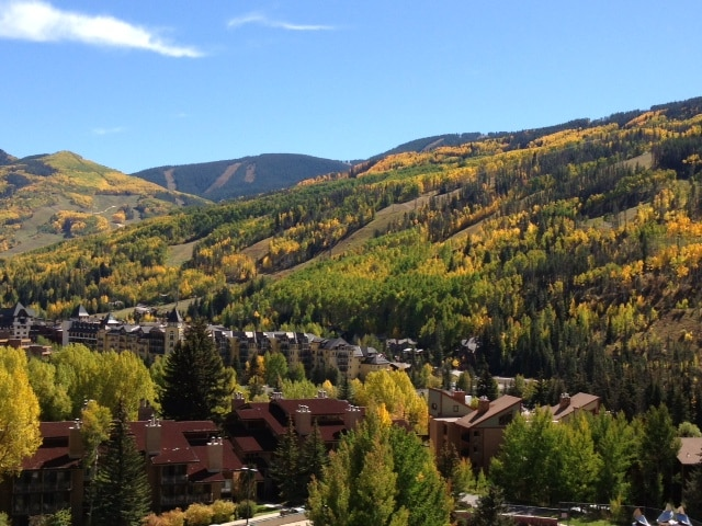 The view from the windows in the Fall!