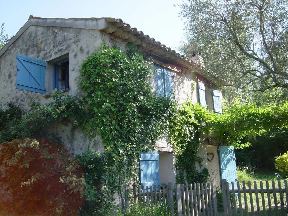 La Bergerie in the olive grove...