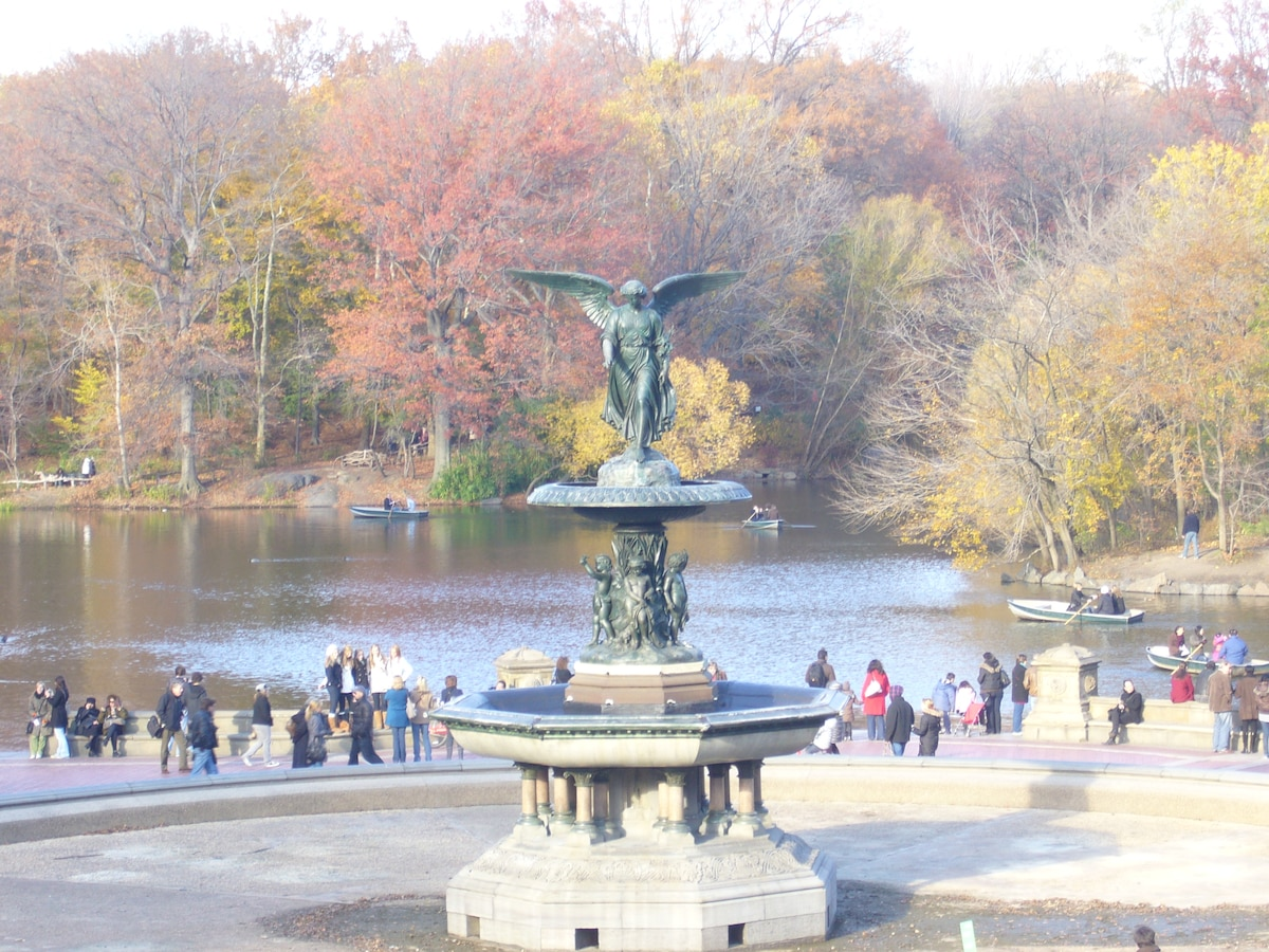 A short walk to NYC best staple, Central Park..!!