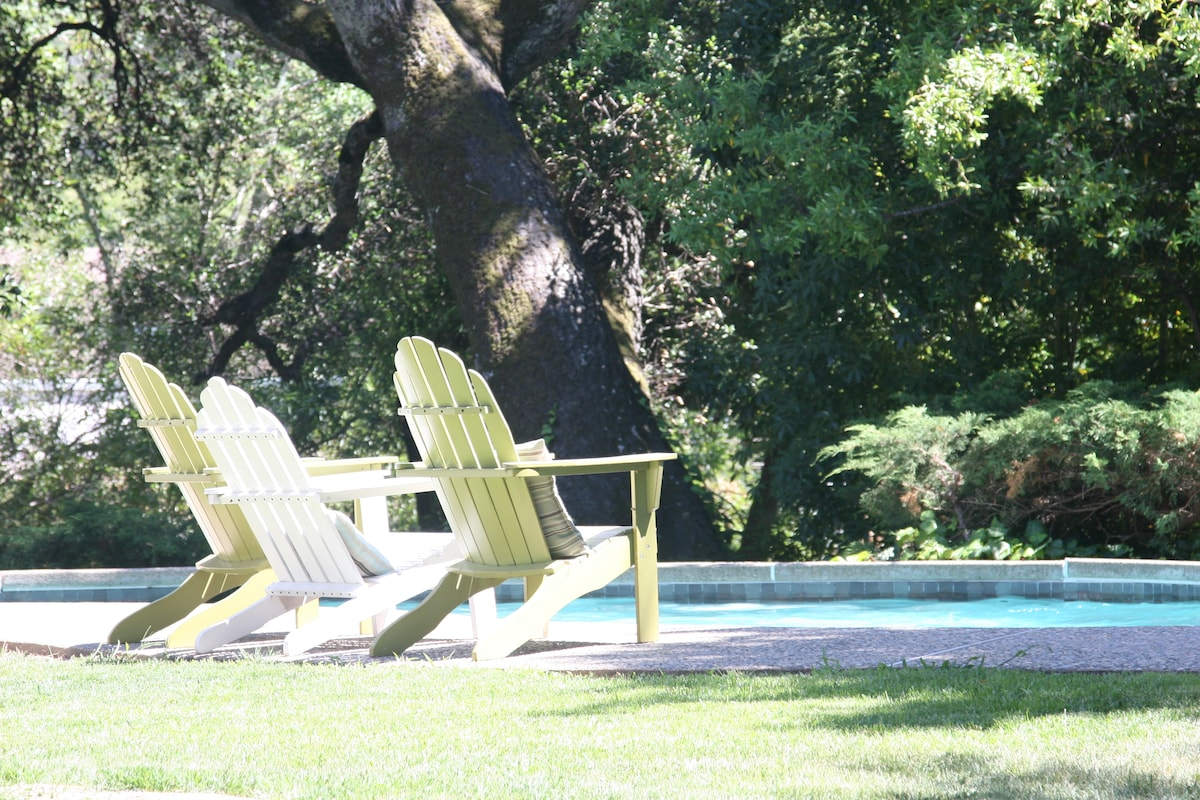 Quiet, private large backyard with pool, hot tub, trampoline for the kids, dining and patio area...