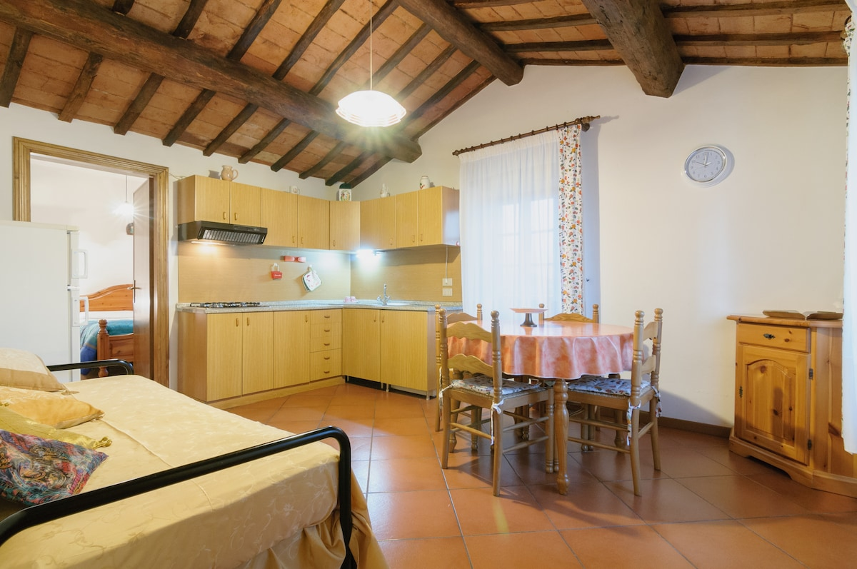 Apartment Trasimeno near Cortona