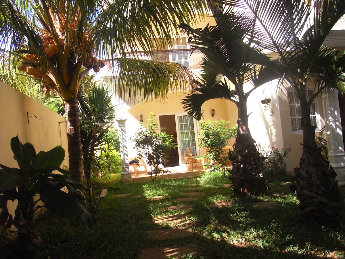 the garden in summer,coconut,mango,papaya,bananas.