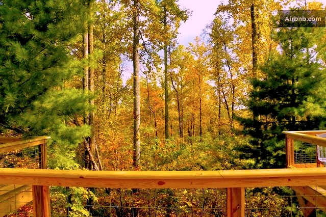 Late fall lookout from the deck. A note to nature lovers- our guests have had the pleasure of watching deer and bears from the deck.
