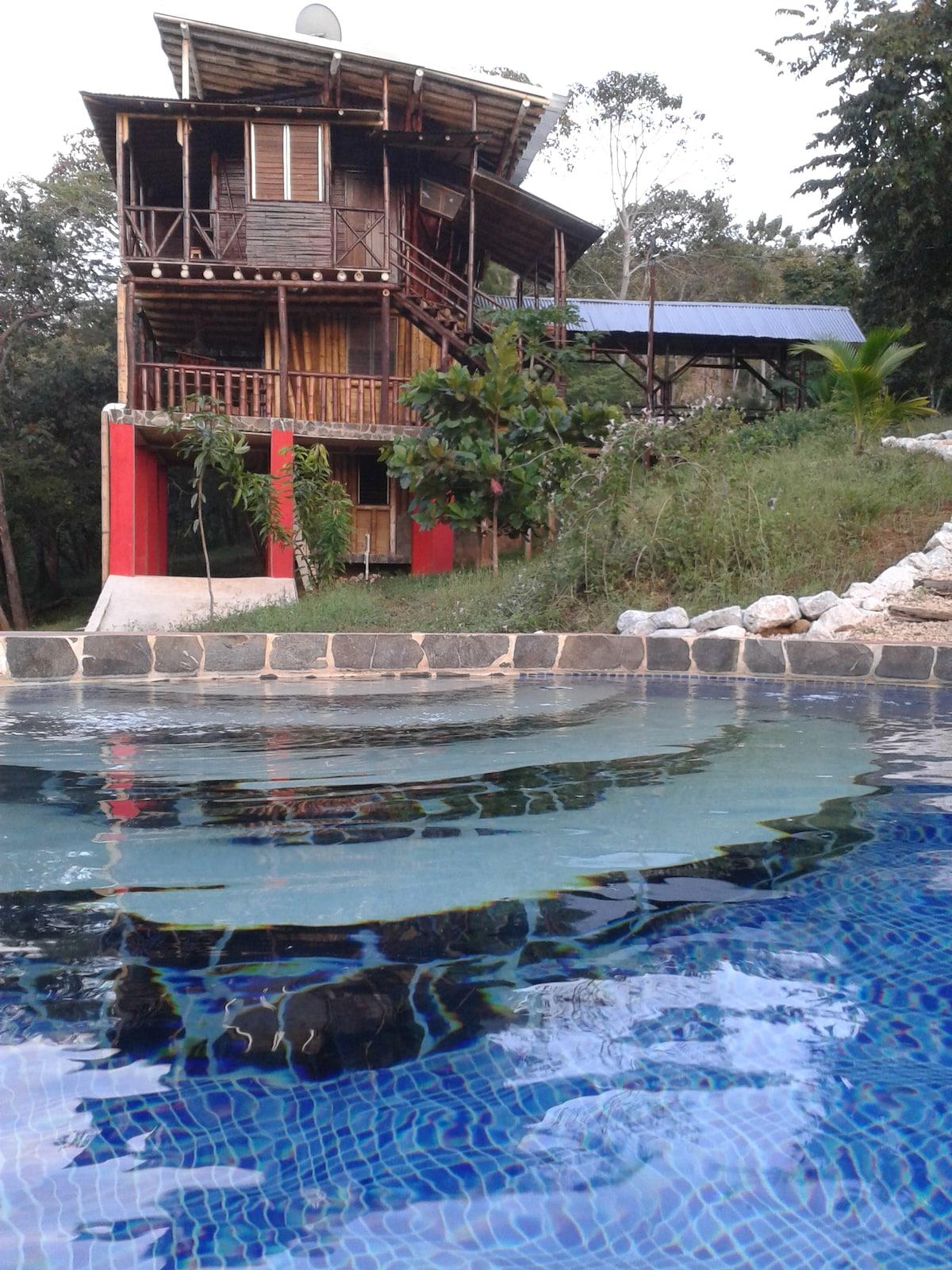 18 acre tropical jungle estate!