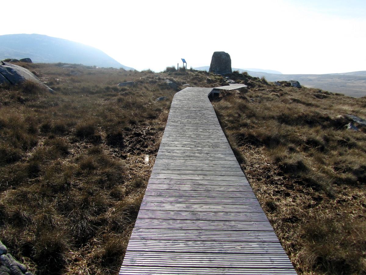 Board walk Connemara National Park