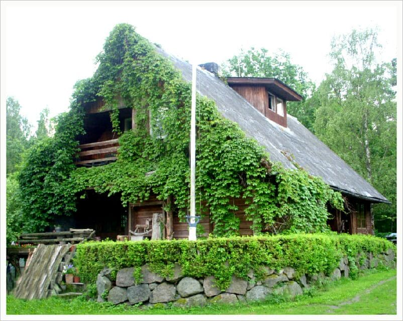 Hostel in nature place
