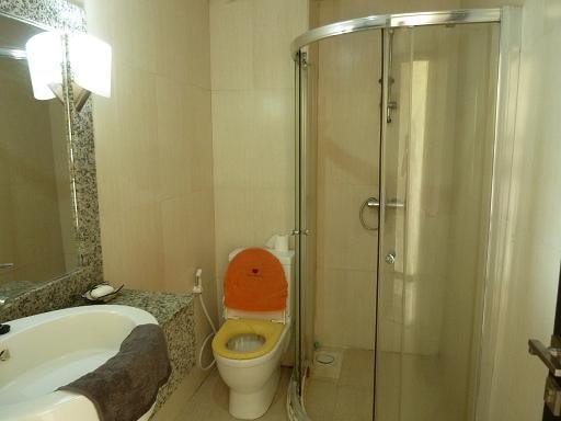 Guests' washroom