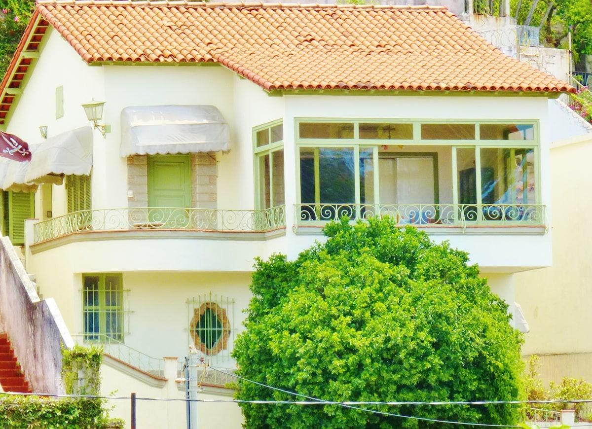 A casa da árvore - na melhor localização de Santa Teresa