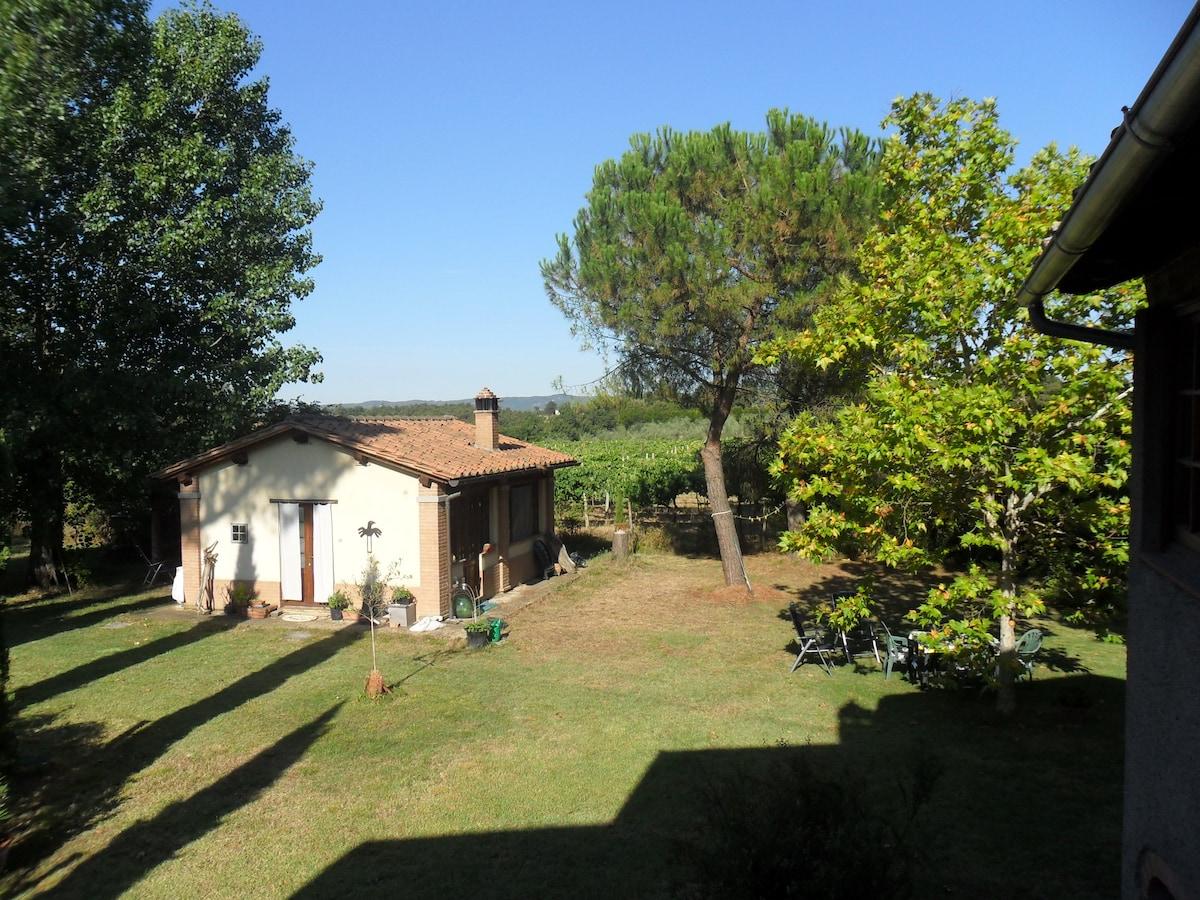Little house in the garden