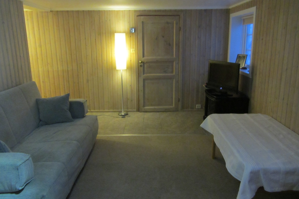 Lounge room (with sofa bed)