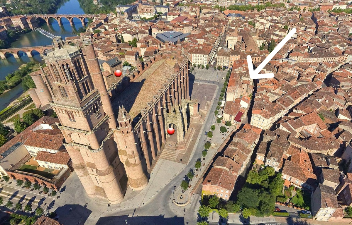 Discover the Episcopal city of Albi