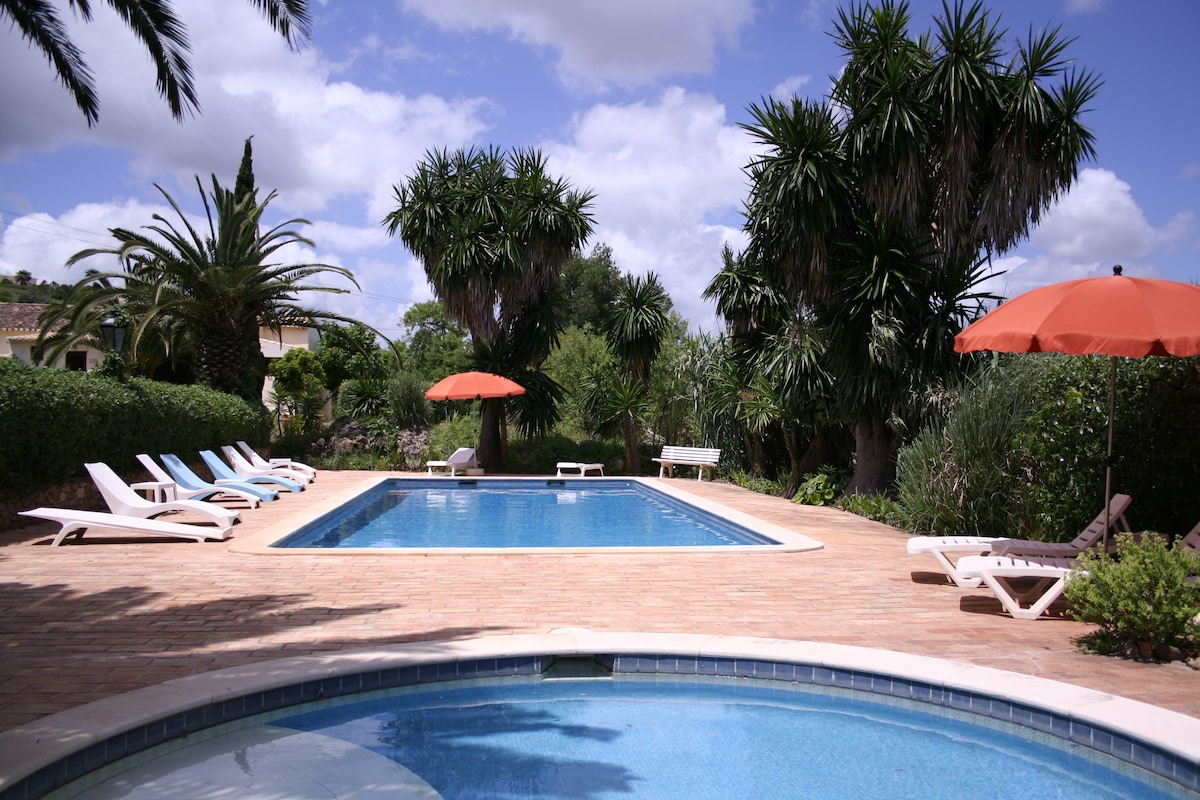 The pool and paddle pool fenced by the largest yucca palms in the Algarve!