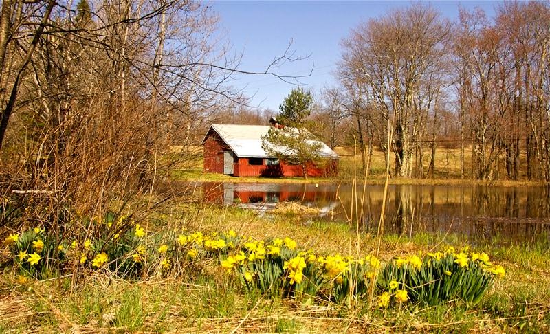 Catskill  Barn Retreat