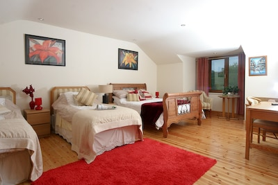 the large family rooms that sleep 4 adults 2 single beds and a double bed