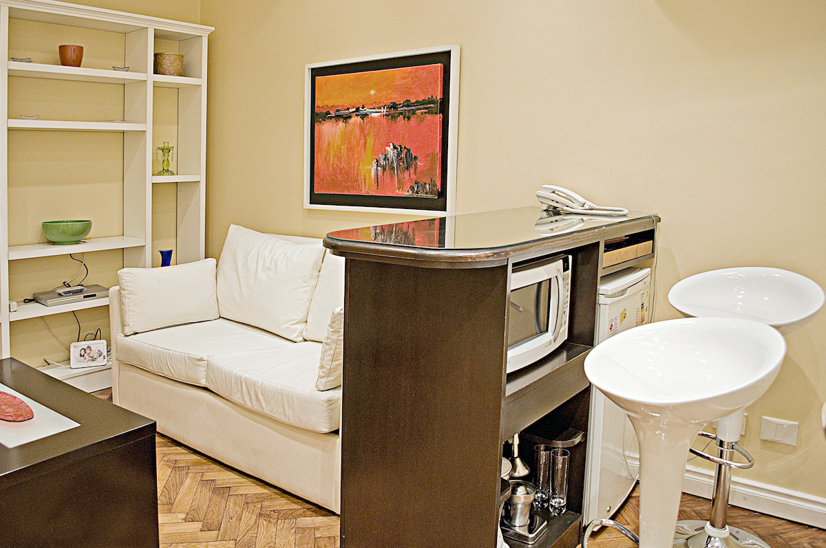 Renovated apartment in downtown