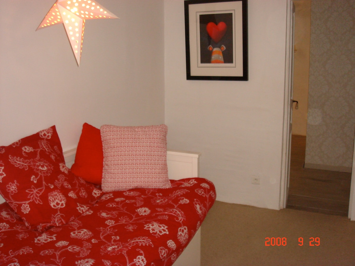 Spare room with pull out sofa bed