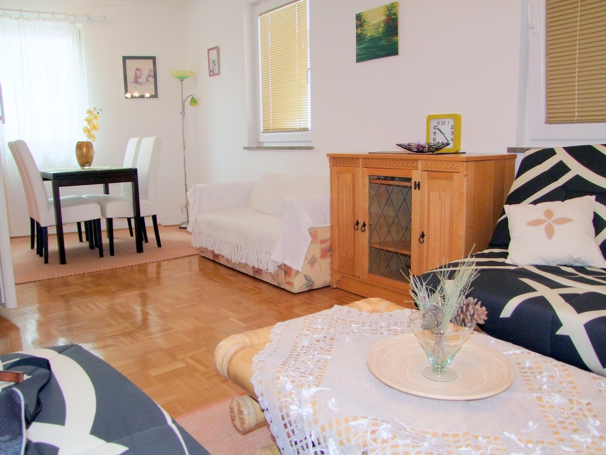 Great Apartment in The Old Town