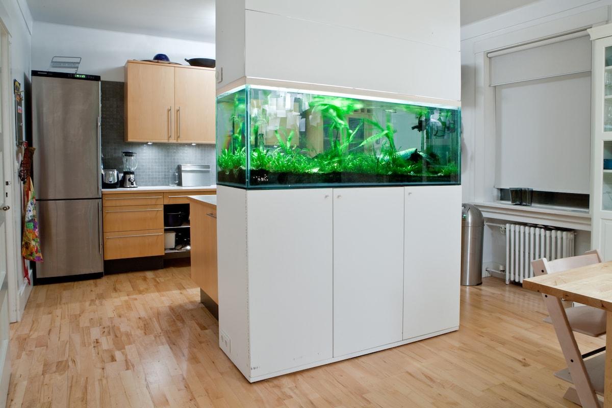 Fish tank and kitchen.