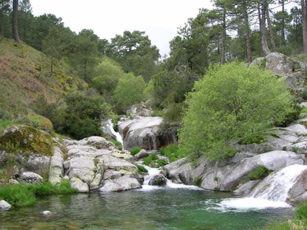Acceso al río Arenal desde la finca
