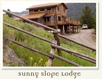 Eco Friendly Lodge