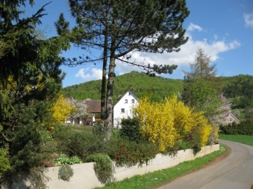 Holiday flat Frankonian Switzerland