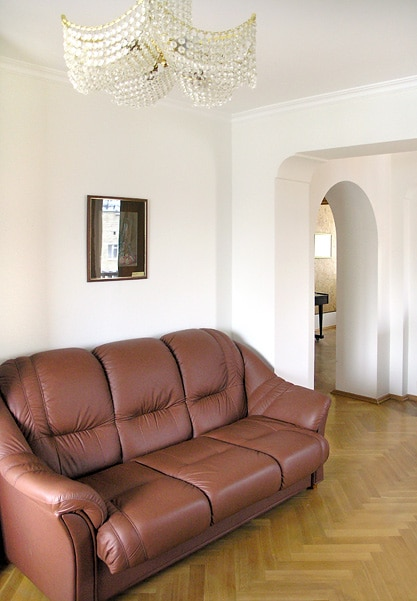 Living room - pull-out sofa