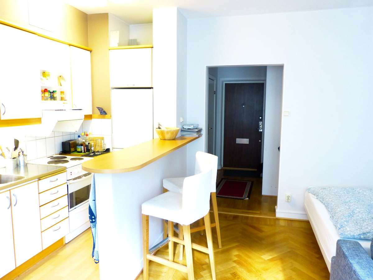 Studio Apartment In Gothenburg City