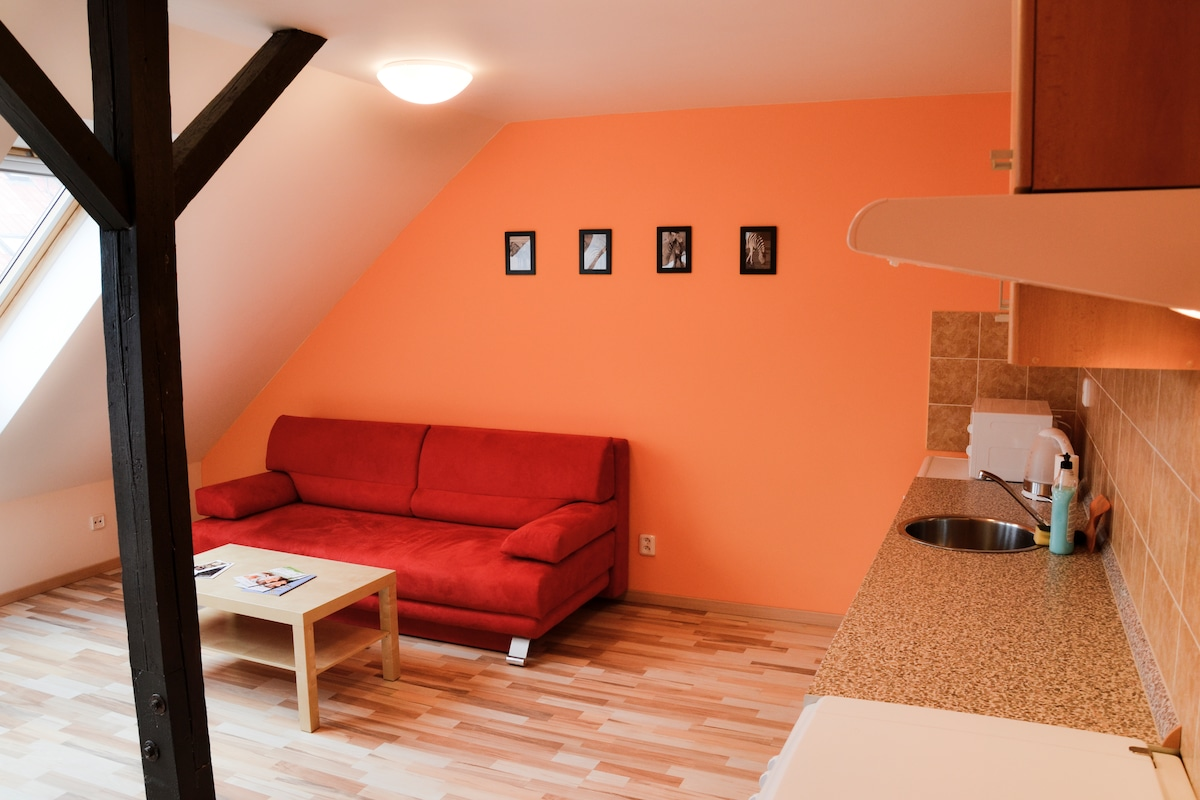 View from the kitchen to fold-out couch (sleeping for two person, 180 cm wide)