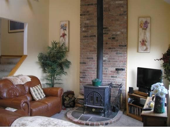 Wood stove in the family room