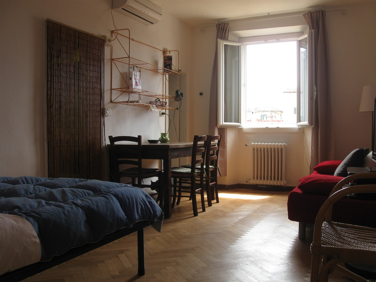 Studio apt in the heart of Florence
