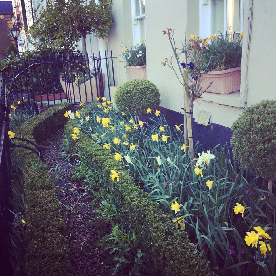 Our front garden, neighbours love to watch seasons change!