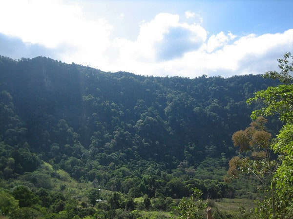 The majestic Tinamastes ridge rises 1000 vertical feet, less than 100 yards from your door. It is full of monkeys and birds!