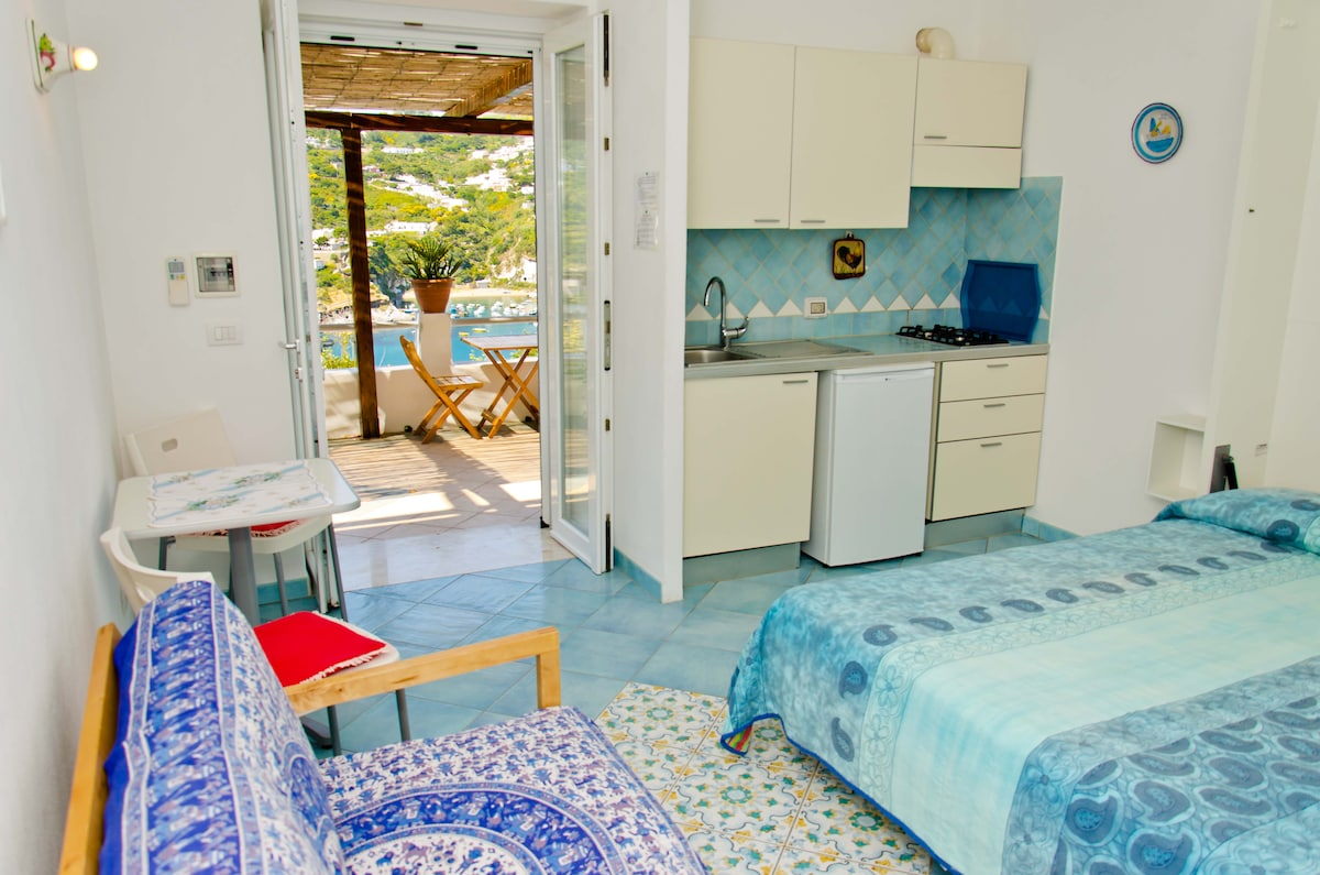 Large room with kitchenette and en-suite bathroom with shower.