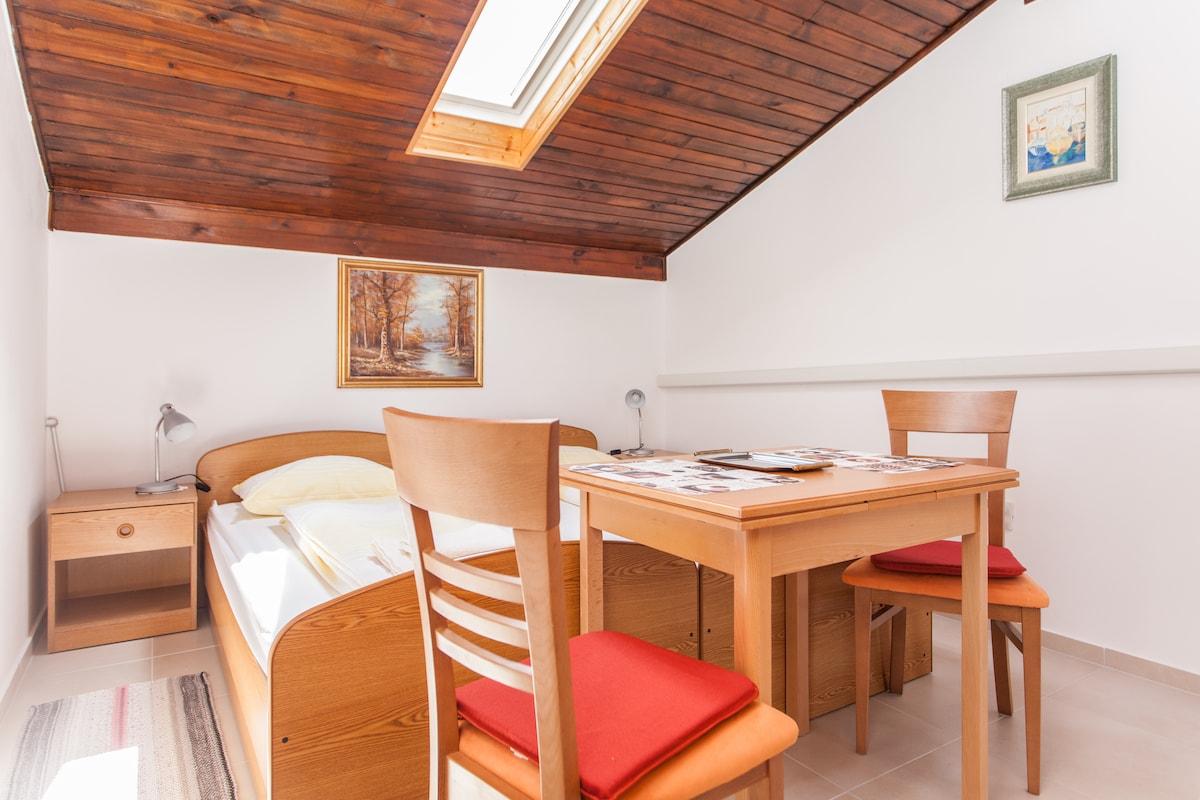 Comfortable studio with big terrace