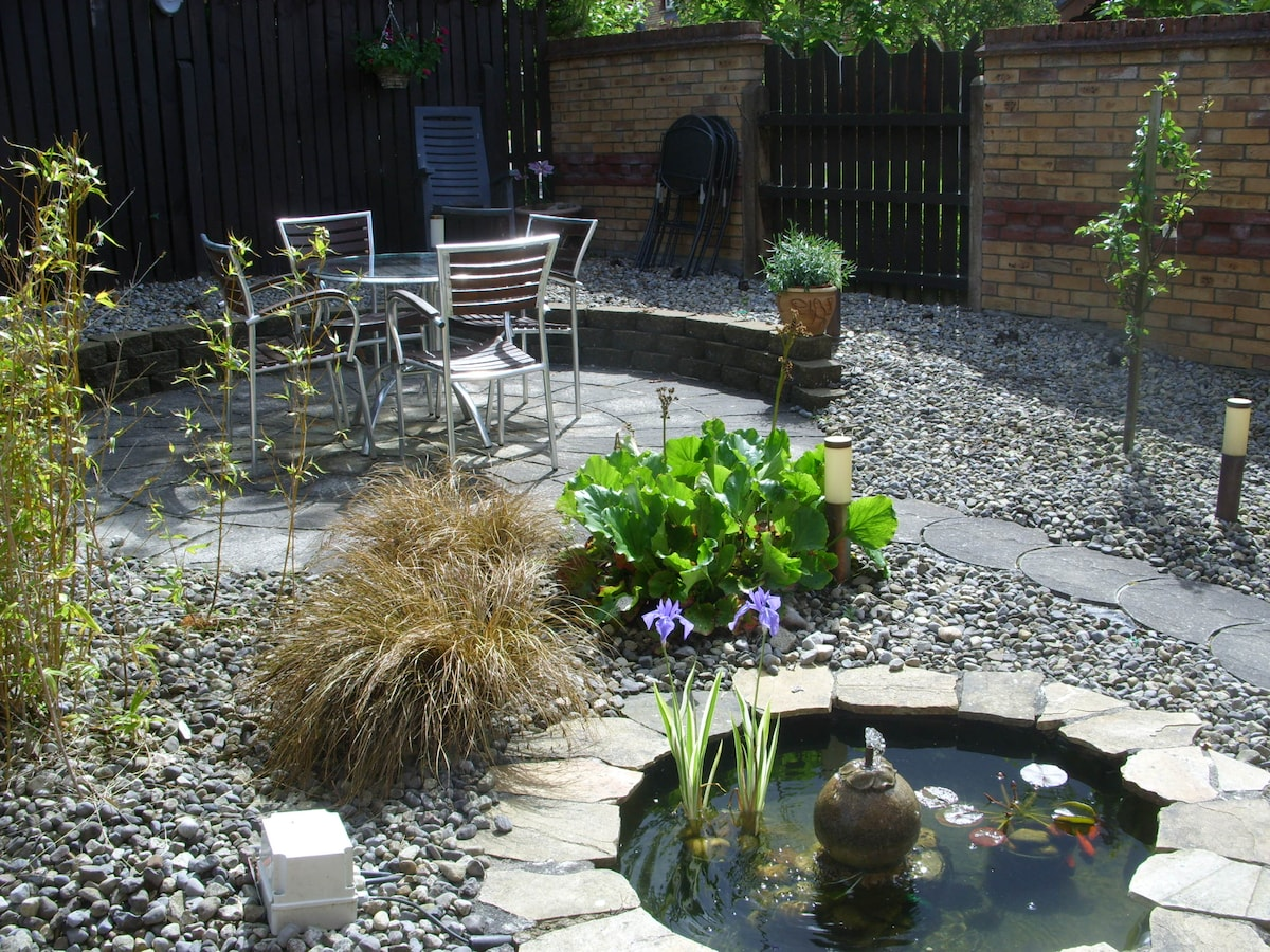 Our sunny back garden
