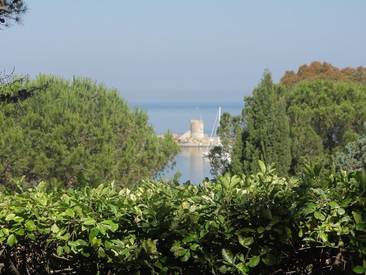 Vista della Torre Pisana