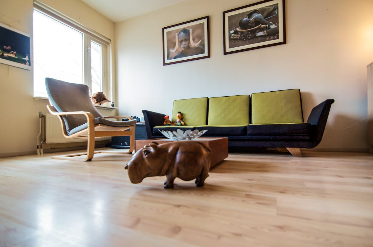 Living room with Naomi the hippo from Namibia :)