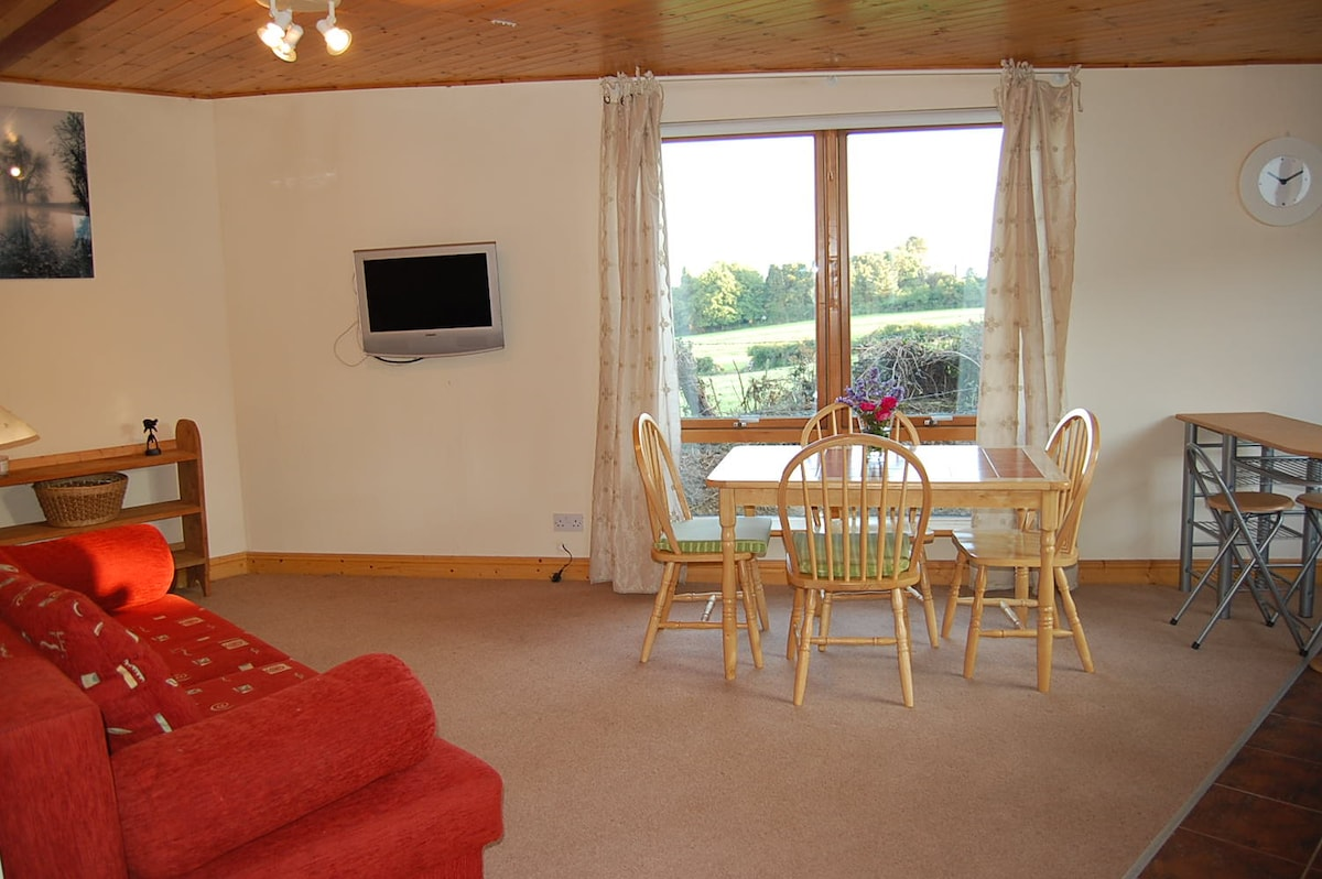 Bright, spacious living/ dining area with amazing views over the Wicklow hills