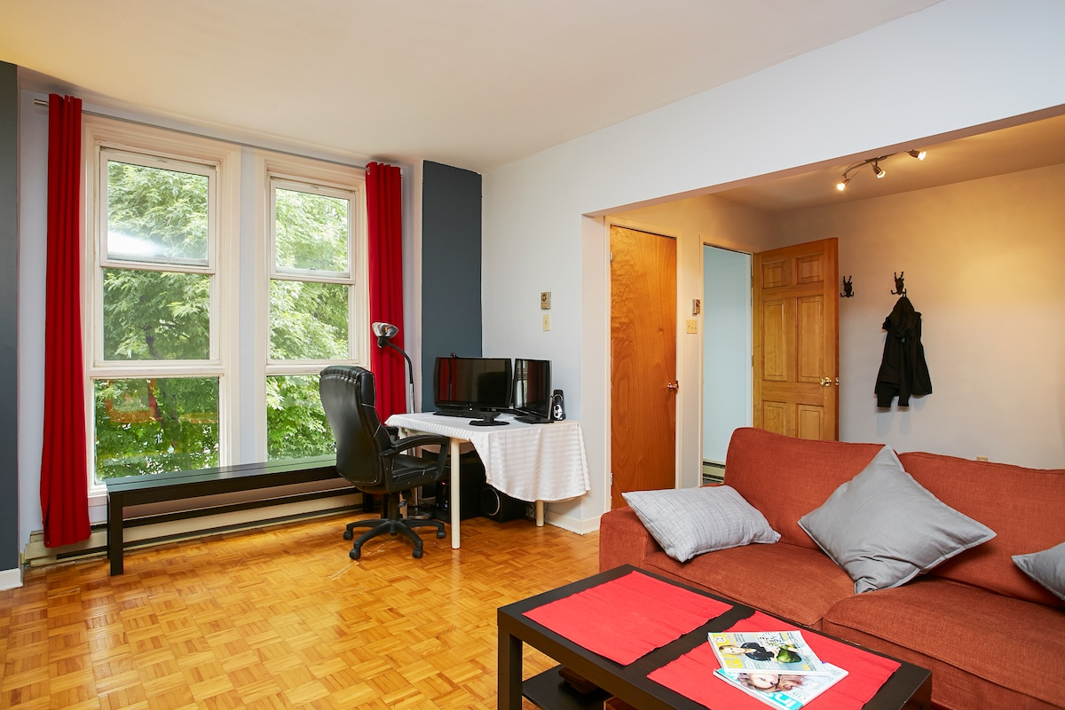 Nice room in Le Plateau/Downtown