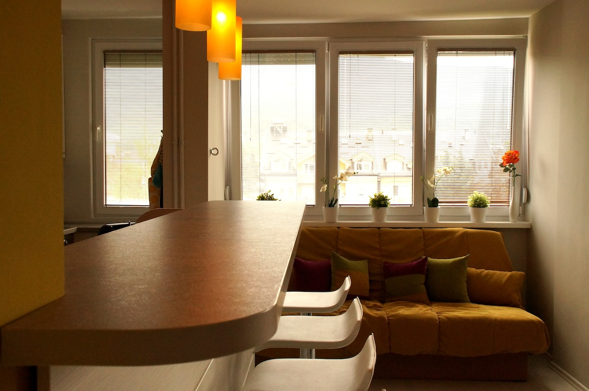 Kitchen Bar, view into dining room fold-out queen size bed and view of the mountain and neighburhood