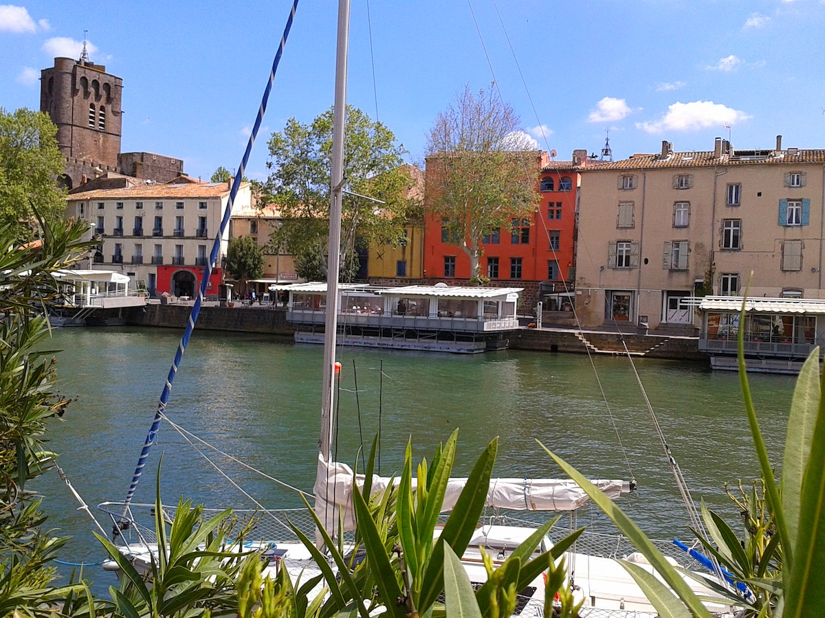 View of the apartment building from across the river herault