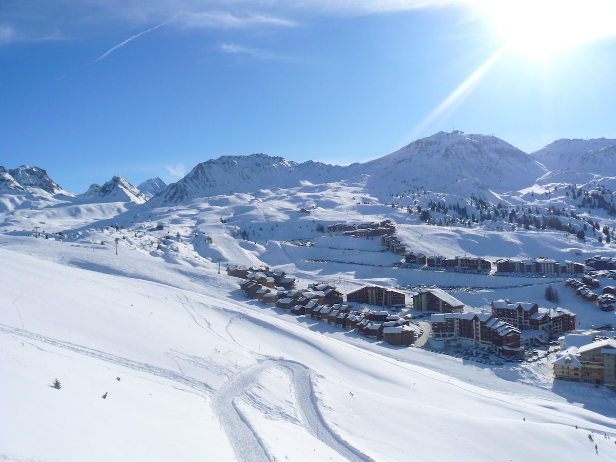 Charming Mountain Chalet La Plagne