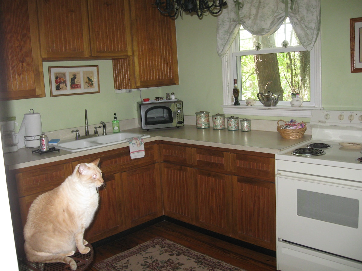 Kitchen privledges available upon request. Don't worry he doens't cook..he is waiting for a treat !