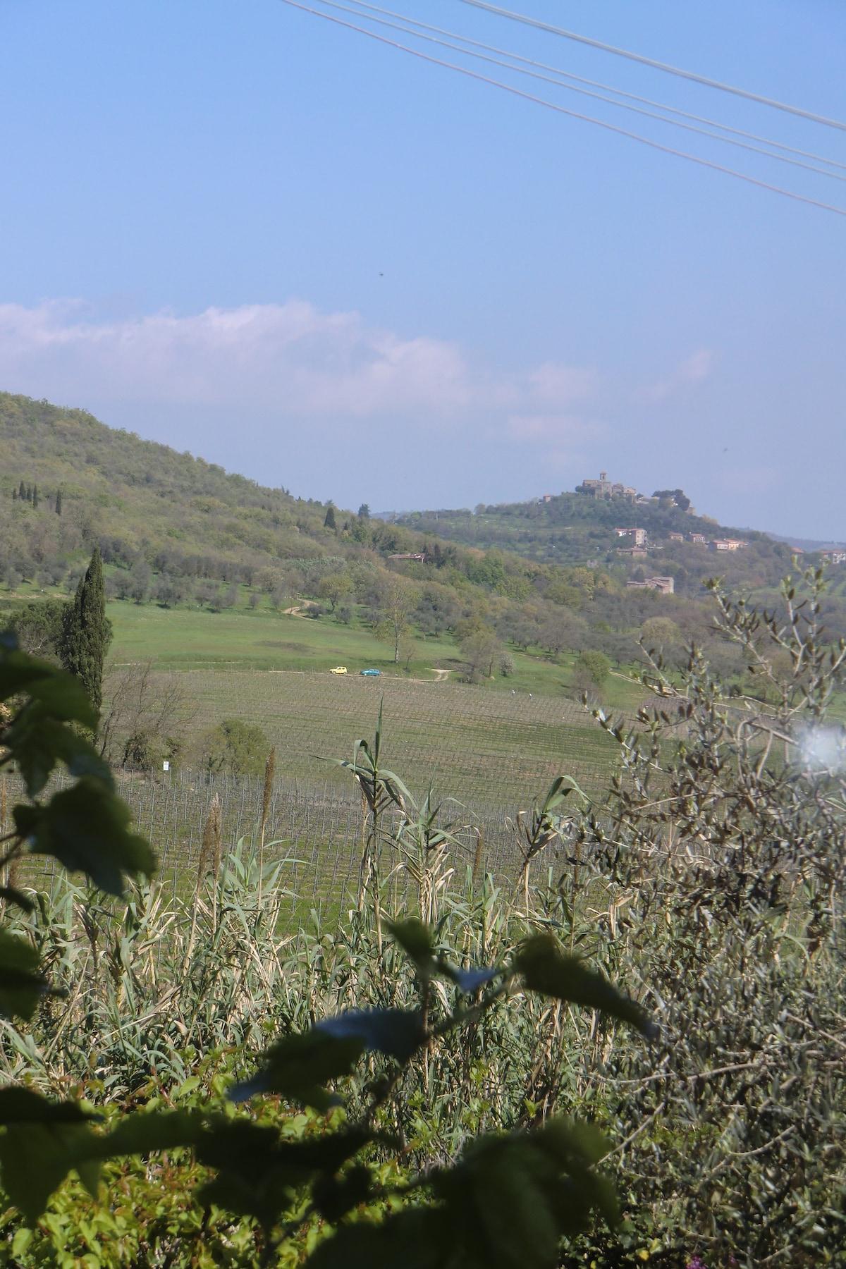Casa/chalet in campagna
